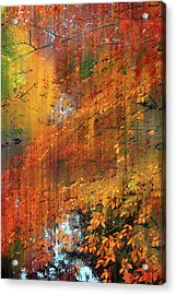Acrylic Print featuring the photograph Autumn Cascade by Jessica Jenney