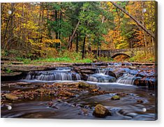 Autumn Cascades Acrylic Print by Mark Papke