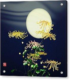 Autumn Chrysanthemums 4 Acrylic Print