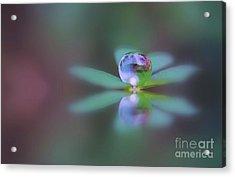 Autumn Clover Droplet Acrylic Print