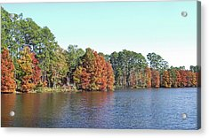 Acrylic Print featuring the photograph Autumn Color At Ratcliff Lake by Jayne Wilson