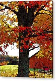 Autumn Color Dance Acrylic Print