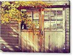 Autumn Color Acrylic Print by JAMART Photography