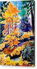 Autumn Colors At Balch Park Acrylic Print by Therese Fowler-Bailey