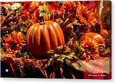 Autumn Colors Acrylic Print by Christopher Holmes