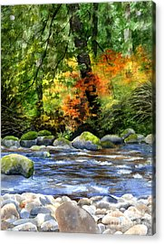Autumn Colors In A Forest Acrylic Print by Sharon Freeman