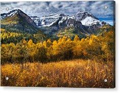 Autumn Colors On Mount Timpanogos Acrylic Print