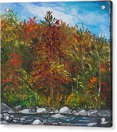 Autumn Colors Acrylic Print by Pamela Wilson