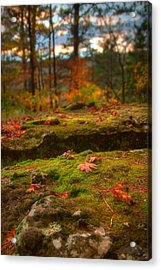 Autumn Colors Acrylic Print by Ryan Heffron