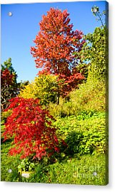 Autumn Colours Acrylic Print