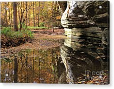 Autumn Comes To Illinois Canyon  Acrylic Print