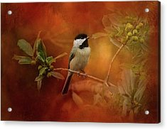 Autumn Day Chickadee Bird Art Acrylic Print by Jai Johnson