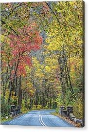 Autumn Drive Through Pisgah National Forest Acrylic Print