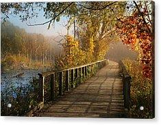 Autumn Emerging Acrylic Print