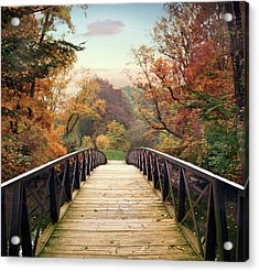 Acrylic Print featuring the photograph Autumn Encounter by Jessica Jenney