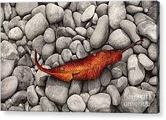 Autumn Epilogue Acrylic Print