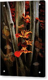 Autumn Epilogue Acrylic Print