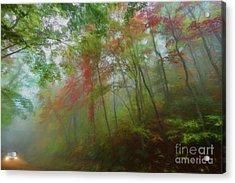 Autumn Fall Colors - A Foggy Drive Through Paradise Ap Acrylic Print