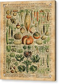 Autumn Fall Vegetables Kiche Harvest Thanksgiving Dictionary Art Vintage Cottage Chic Acrylic Print