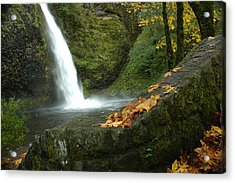 Acrylic Print featuring the photograph Autumn Falls by Lori Mellen-Pagliaro
