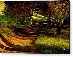 Autumn Feel Acrylic Print