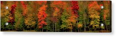 Autumn Fence Line Acrylic Print by David Patterson