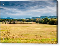 Autumn Field Acrylic Print