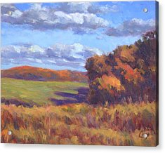 Autumn Fields Acrylic Print by Michael Camp