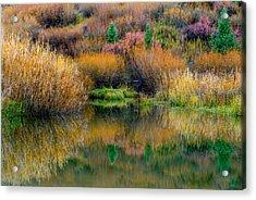 Autumn Fishing Hole Acrylic Print