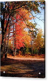 Autumn Flame Acrylic Print by Jennifer Englehardt