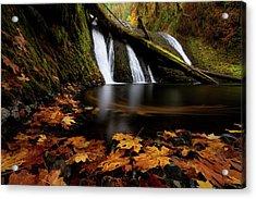 Autumn Flashback Acrylic Print