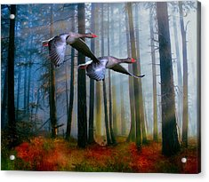 Acrylic Print featuring the photograph Autumn Flight by Diane Schuster