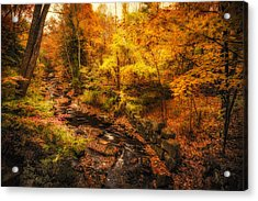 Acrylic Print featuring the photograph Autumn Flow by Robert Clifford