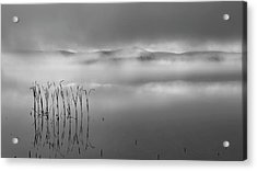 Acrylic Print featuring the photograph Autumn Fog Black And White by Bill Wakeley