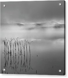 Acrylic Print featuring the photograph Autumn Fog Black And White Square by Bill Wakeley