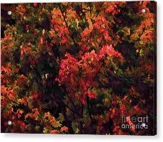 Autumn Foliage 4 Acrylic Print