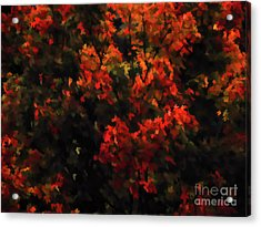 Autumn Foliage 5 Acrylic Print