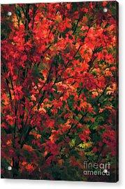 Autumn Foliage 6 Acrylic Print