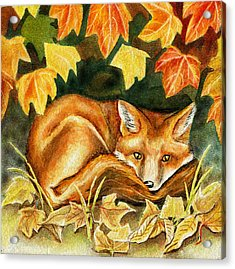 Autumn Fox Acrylic Print