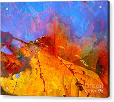 Autumn Fusion 1 Acrylic Print by Jeff Breiman