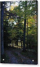 Autumn Glen Acrylic Print