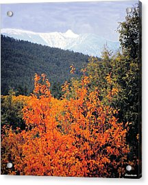 Autumn Glory And Mountain Cathedral Acrylic Print by Anastasia Savage Ealy