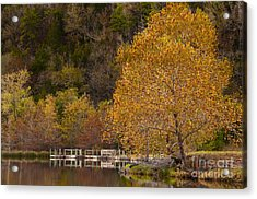 Acrylic Print featuring the photograph Autumn Glory In Beaver's Bend by Tamyra Ayles