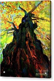 Autumn Glow Acrylic Print by Allison Coelho Picone
