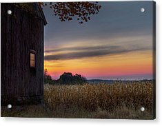 Acrylic Print featuring the photograph Autumn Glow by Bill Wakeley
