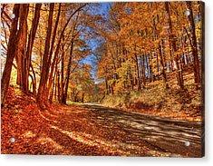 Autumn Glow Acrylic Print by Dale R Carlson