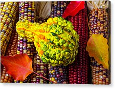 Autumn Gourd With Corn Acrylic Print by Garry Gay