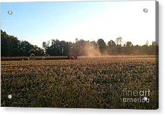 Autumn Harvest At Dusk Brown County Indiana Acrylic Print by Scott D Van Osdol