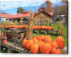 Autumn Harvest Pumpkins And Sugar House Acrylic Print