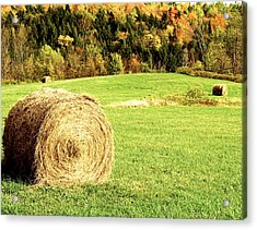 Autumn Hay Bales  Acrylic Print
